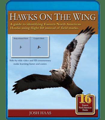 Hawks-on-the-Wing-BluRay