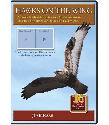 Hawks-on-the-Wing-DVD